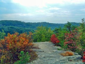 View from atop Double Arch in the Red River Gorge.