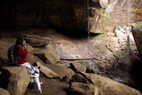 Dogs love the Red River Gorge.